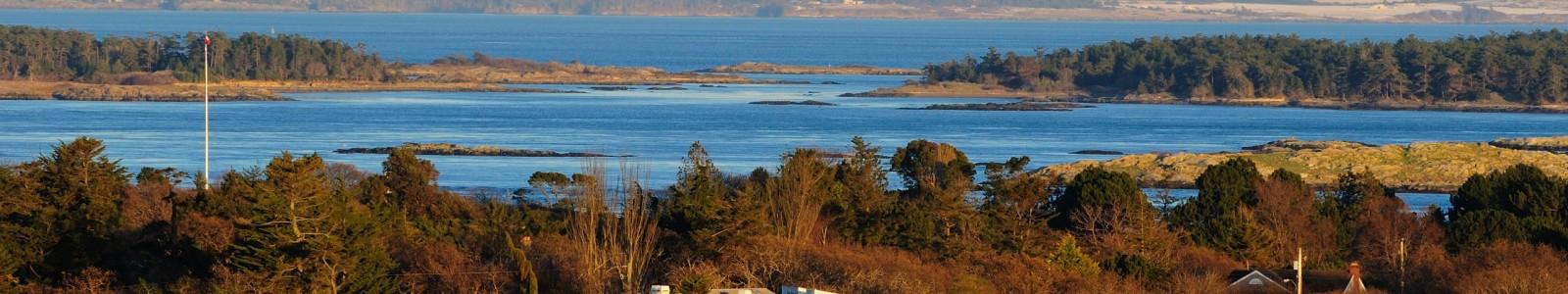oak bay real estate vancouver island dfh