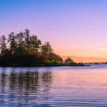 view royal estate vancouver island dfh